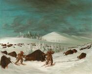 Buffalo Hunt on Snow Shoes