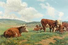 Day Herding