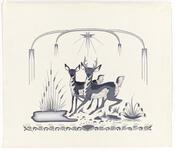 Buck and Deer