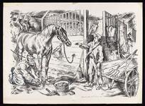 Grooming in the barn