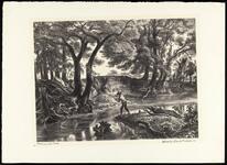 Fishing Joe's Creek