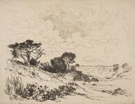 On the Sandhills - Easthampton
