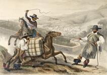 Arrieros, Vista General de Guanajuato