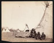 The Bear's Camp