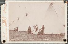 Humming Bird's Camp