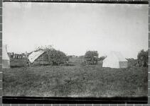 Summer camp showing arbors
