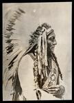 Sitting Bull, Medicine man