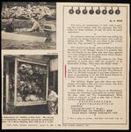 """Newspaper clipping from """"New York Mirror Magazine"""" encouraging donations to purchase William R. Leigh's painting """"Midnight Ride of Paul Revere"""""""