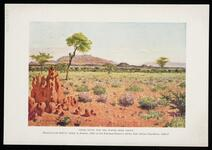 "Copies of magazine page ""Frontiers of Enchantment Color Study for the Water Hole Group"""