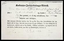 Certificate attesting to Julie Augusta Nielsen's smallpox vaccination on July 12, 1853 with transcript documents