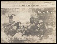 """Photocopy of clipping with image of """"Wild Life"""""""