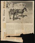 "Newspaper article with photo of two donkeys, ""Patient"""