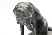 Black model wolf with one broken ear