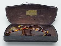 Lightly tinted glasses with black leather case