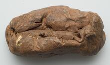Oblong lump of clay
