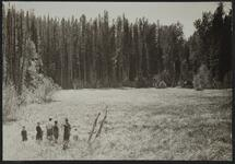 Photograph of a group of people hiking near a field