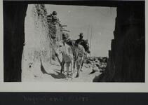 Man standing behind two burros near adobe walls