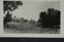 Men and women grouped around a small cluster of short trees with wagon