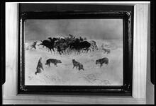 Horses and Wolves in Winter
