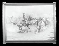 Roping Wild Horses