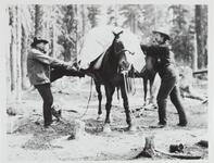 Two Unknown Men with Pack Mule