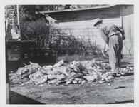 Unknown Man with Sledgehammer