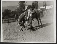 Con Price with Horse