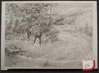 Ambush of Stagecoach