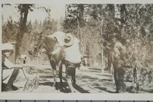 Charels M. Russell Loading a Pack Horse