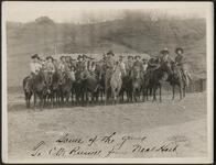 Group on Horses