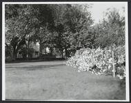 Photograph of Trail's End Garden