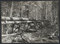 Photograph of Pipeline