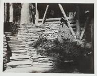 Photograph of Steps