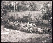 Trail's End Garden