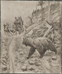 Bear Approaching a Stagecoach