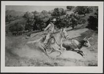 Cowboy Running Down Steer