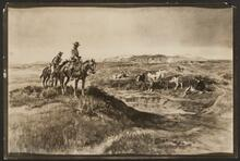 Mounted Cowboys Watching Over a Head of Cattle
