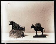 Burro and Boar