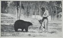Unknown Man with Bears