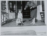 Unknown Woman with Two Dogs