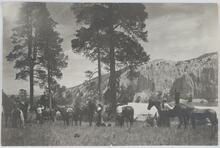 Group of Men and Horses near Camp
