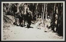 Men with Horses