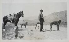 Man with Horses and Dogs