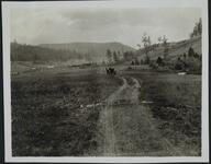 Wagon on Road