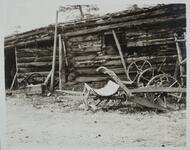 Log Building and Plow