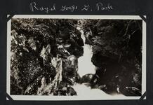 Glacier Park Royal Gorge
