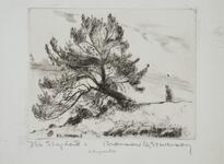 Etching of Tree and Shepherd