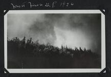 Forest Fires at Glacier Park