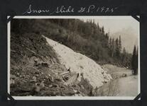 Snow Slide, Glacier Park