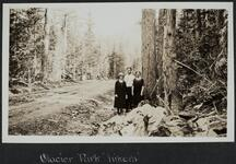 Glacier Park Hikers